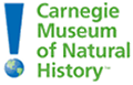 Link to Carnegie Museum of Natural History